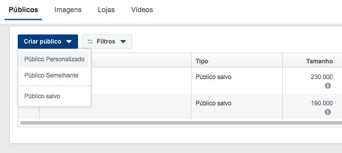 criar publico personalizado no Facebook